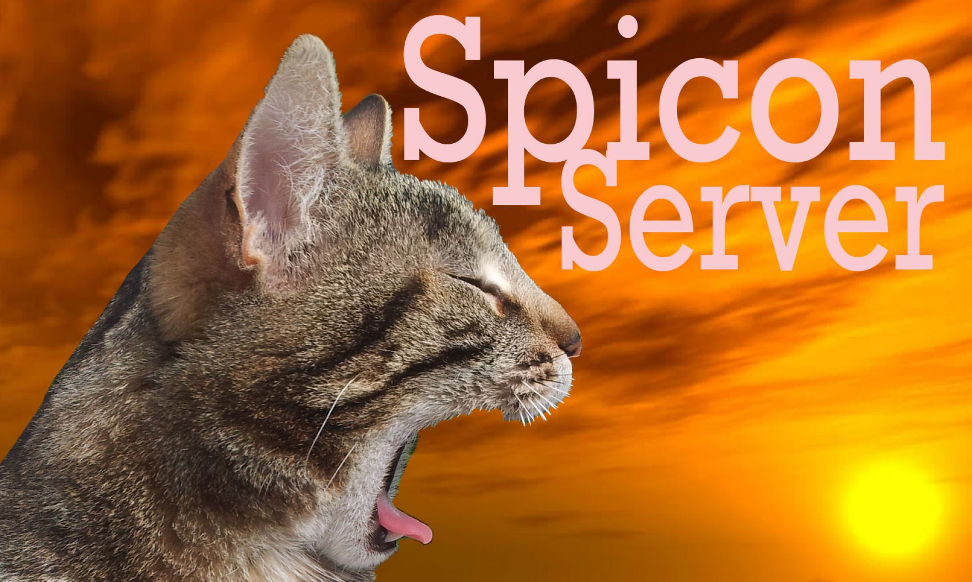 Spicon Server
